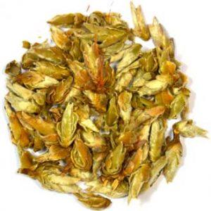 Yunnan Silver Bud Ya Bao